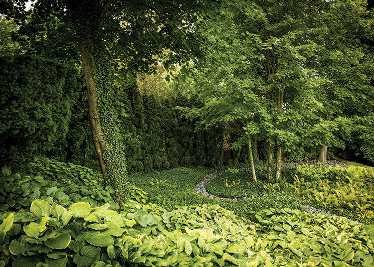 Gardens That Beckon - Shade Garden