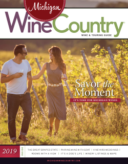 Michigan Wine Country 2019 cover